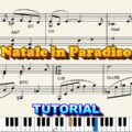 Natale In Paradiso Tutorial - Luciano Lombardi